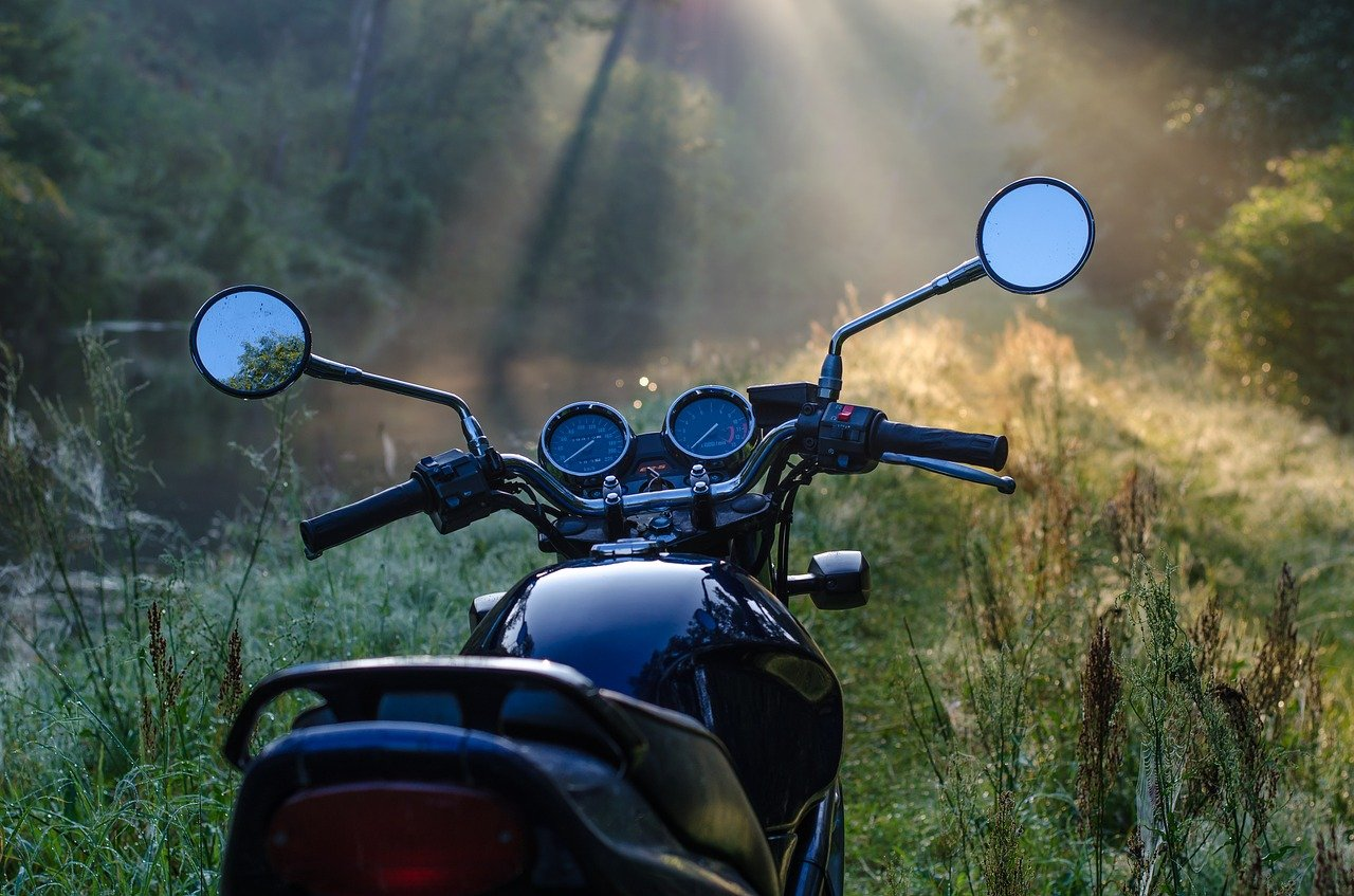 motorcycle, morning, forest